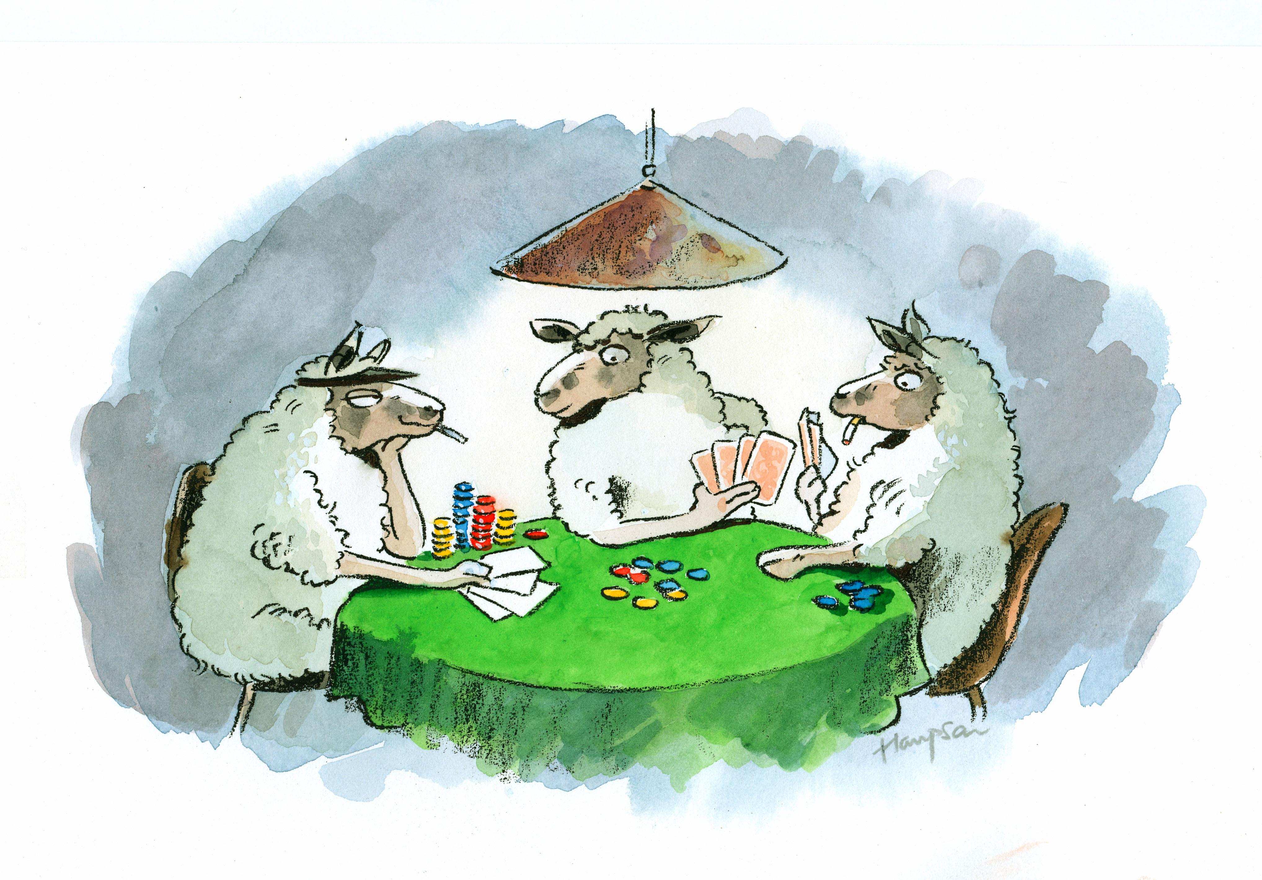 sheep illustration | handbuilt cartoon illustrations